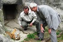 Malé tygry ministr Heger nejprve pokřtil a pak za nimi šel do výběhu