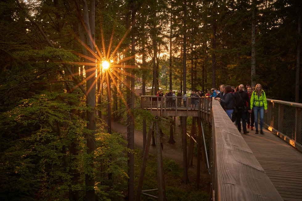 Romantický večer na Stezce korunami stromů Krkonoše.