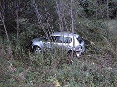 Řidička skončila s autem v křoví.