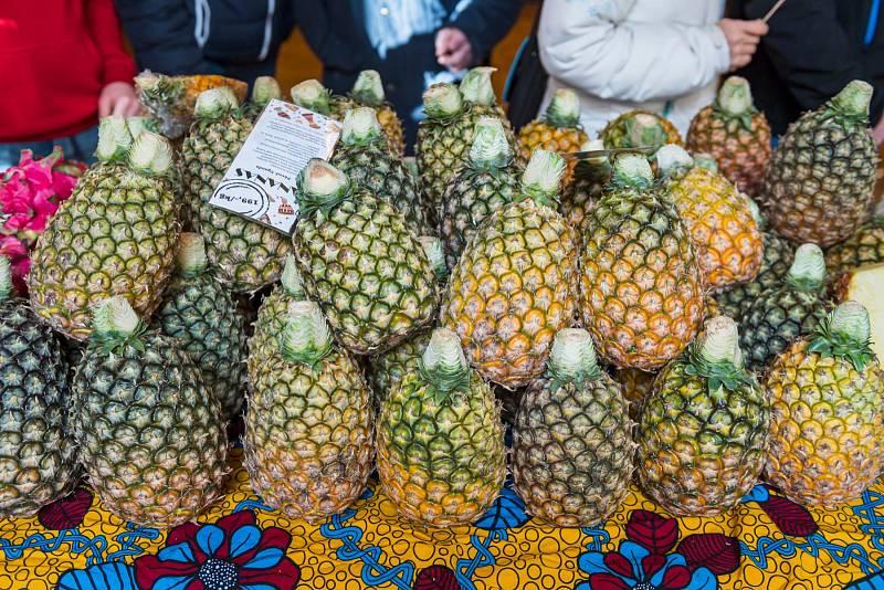Africké trhy v Trutnově