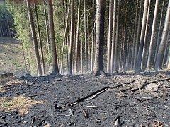 Požár lesa ve Ždírnici