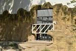 V Safari Parku Dvůr Králové vzniká prostornější bydlení pro slony. Klíčovou novinkou bude využívání kontaktní stěny z ocelových rámů s otvory pro uši, nohy nebo chobot.