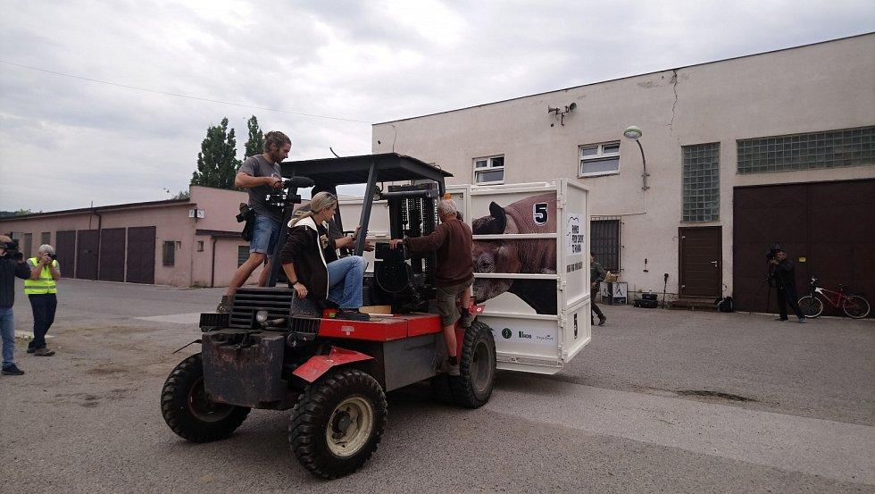Nedělní transport nosorožců ze Dvora Králové nad Labem.