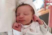 Stela Suchá se narodila 30. října v 10.01 hodin rodičům Terce a Honzíkovi. Vážila 2,84 kg a měřila 48 cm. Spolu se sestřičkou Emičkou mají domov v Hostinném.