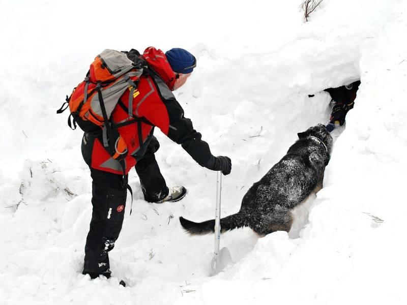Na kurzu ve Špindlerově Mlýně členové Horské služby cvičili záchranu osob pomocí psů