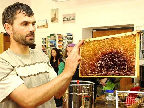 Během Muzejní noci ve Vrchlabí si zase mohli prohlédnout zajímavosti ze života včel.