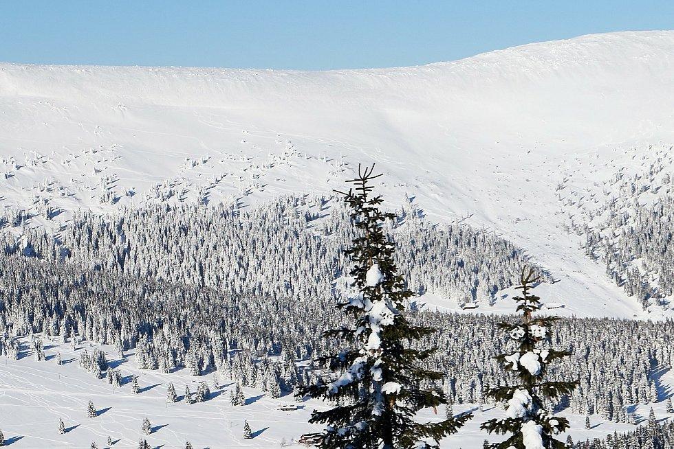 Hřebeny Krkonoš v pondělí 15. února 2021.