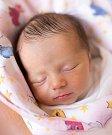 ROZÁRIE HOLUBIČKOVÁ se narodila 12. ledna ve 14.58 hodin Michaele Zaplatílkové a Pavlu Holubičkovi. Měřila 45 centimetrů a vážila 2,515 kilogramu. Rodina bydlí v Josefově Dole.