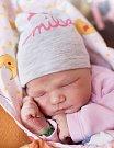 JUSTÝNA KOČÍBOVÁ se narodila Janě a Ondřejovi 17. ledna v 8.23 hodin. Vážila 3,46 kilogramu a měřila 51 centimetrů. Doma v Harrachově už čeká i sestřička Izabela.