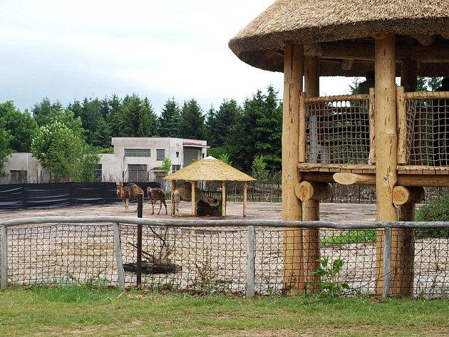 Slavnostní otevření Safarikempu ve Dvoře Králové