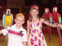 Pro děti bylo opravdovým zážitkem, když se mohly fotografovat s cizokrajnými papoušky na svých rukou.