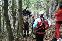 Paraglidista uvízl na stromě
