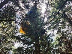 Polský paraglidista se zřítil na Černé hoře