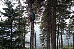Paraglidista zůstal viset po startu na stromě na Černé hoře, dolů mu pomohli hasiči.
