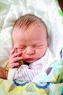 ADÉLKA KREISINGEROVÁ se narodil 6. listopadu v 1.39 hodin rodičům Adéle a Martinovi. Vážila 2,78 kg a měřila 49 cm. Rodina bydlí v Prostředním Lánově.