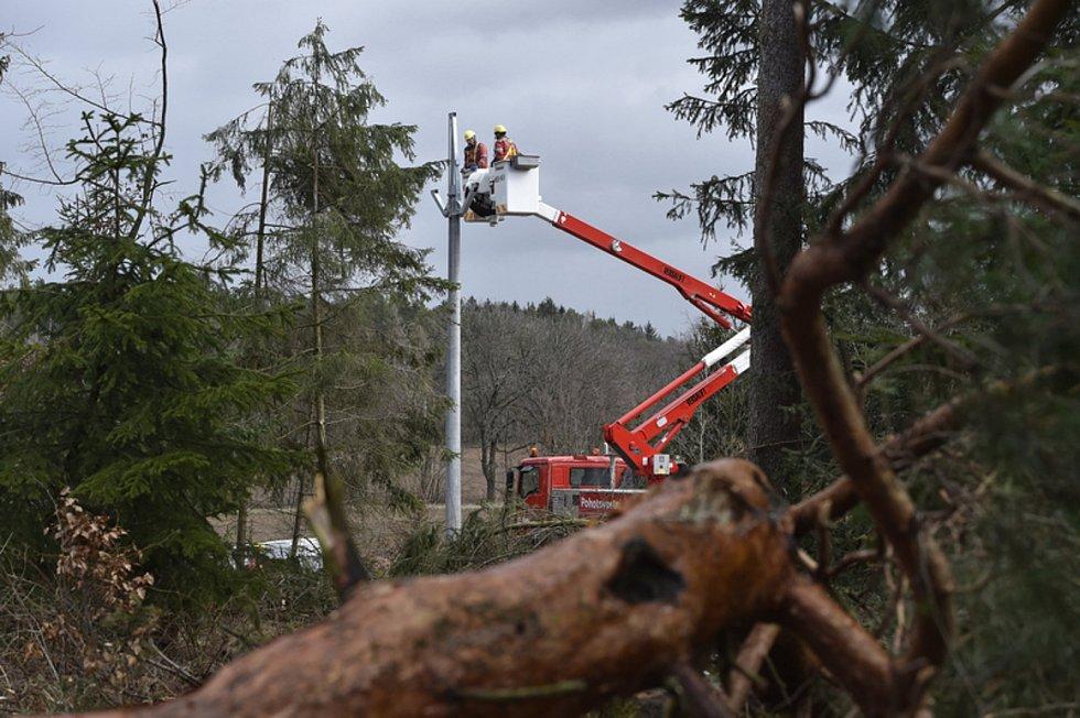 Energetici opravují vedení strhané stromy, které neodolaly silnému větru. Ilustrační fotografie.