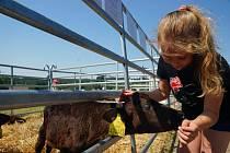 Farmáři z Voletin na okraji Trutnova ukázali dětem současné zemědělství.
