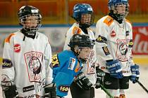 Hokejový kemp