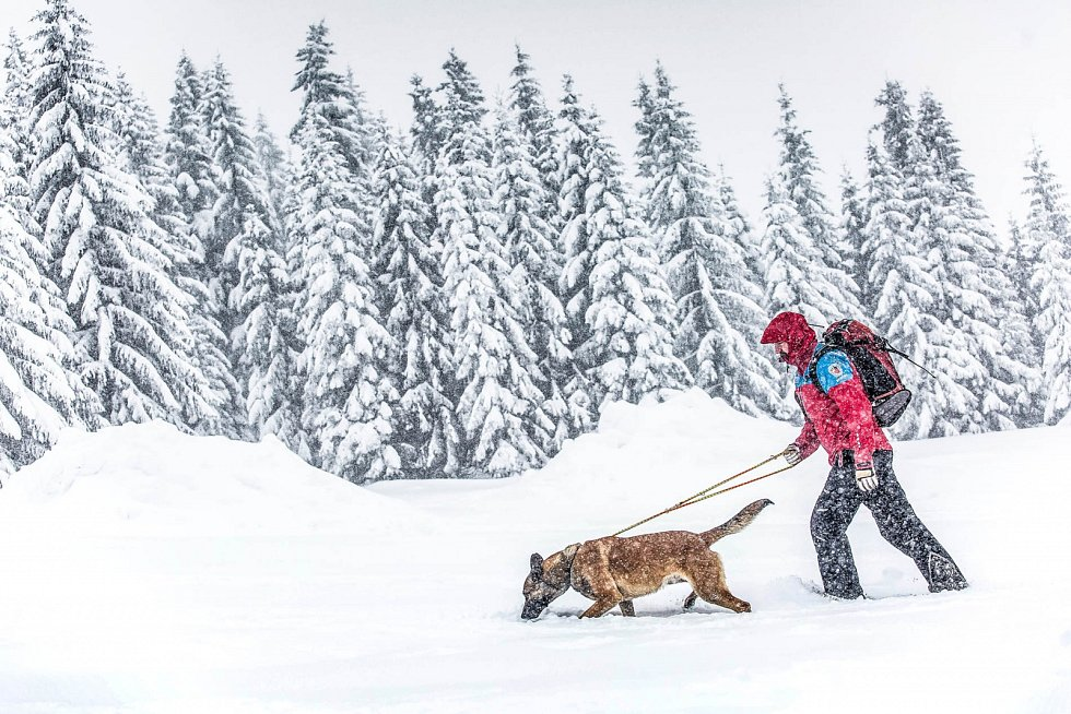Mezinárodní lavinový kurz Horské služby v Krkonoších