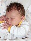 AMÁLIE ŘEZÁČOVÁ se narodila 31. října v 11.02 hodin Michaele a Stanislavovi. Vážila 3,54 kilogramu a měřila 52 centimetrů. S rodiči bude bydlet v Trutnově – Lhotě.