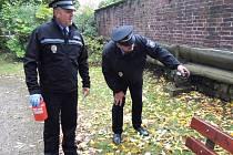 VYTIPOVANÁ MÍSTA prošli strážníci Městské policie v Trutnově.
