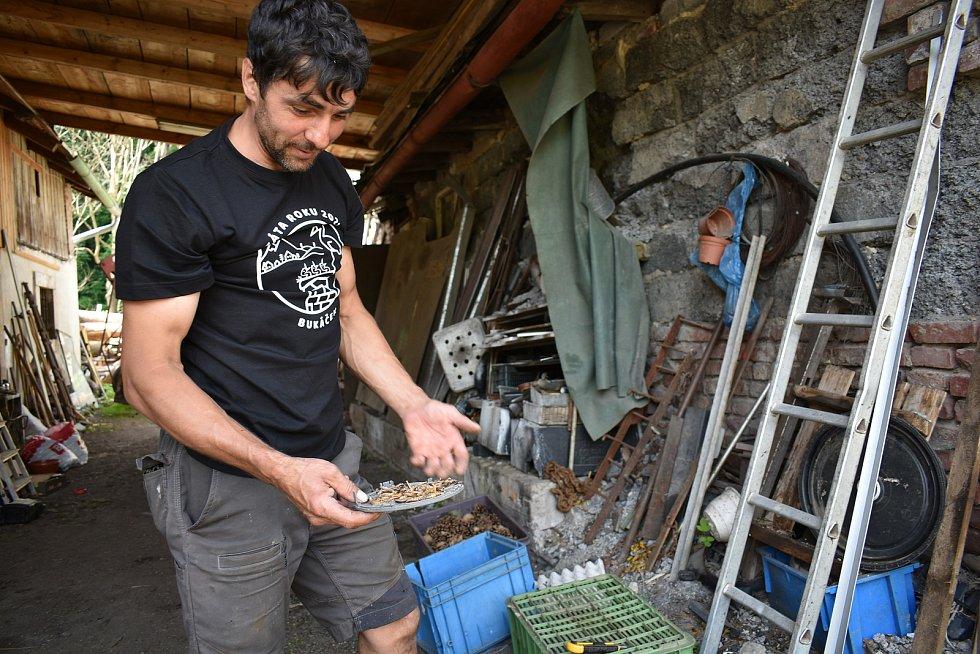 Chystá se oběd. Čapí mláďata hnízdí v Mladých Bukách na dvanáct metrů vysokém sloupu. S krmením tam za nimi třikrát denně leze Šándor Havrán.