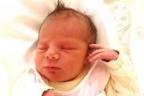 HANA VAŠÁKOVÁ se narodila se 11.března v 17.00 hodin rodičům Daniele a Janovi. Vážila 3,41 kg a měřila 50 cm. Spolu se sestřičkou Alicí bydlí v Trutnově-Libči.