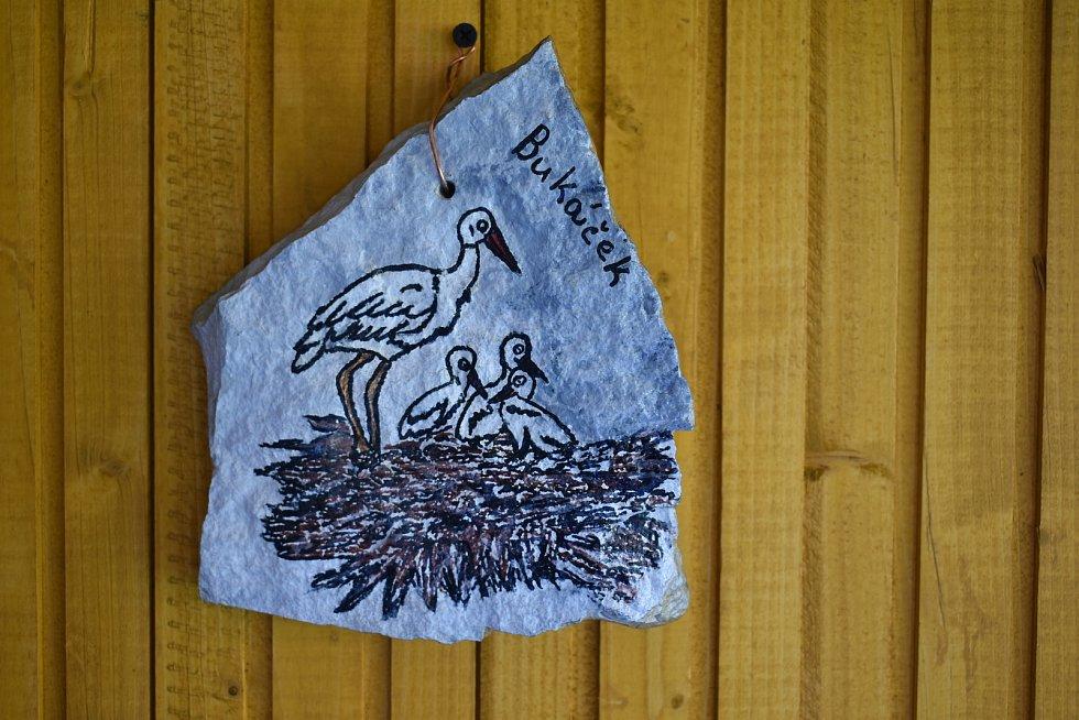 Šándor Havrán z Mladých Buků krmí třikrát denně čapí mláďata, která hnízdí na dvanáct metrů vysokém sloupu na zahradě jeho rodinného domu. Dostává dopisy a dárky od lidí z celé republiky.