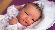 LUCIE URBANOVÁ se narodila Evě a Pavlovi 22. listopadu v 8.22 hodin. Vážila 3,95 kilogramu a měřila 53 centimetrů. Doma ve Studenci už čekají i sestřičky Tereza a Martina.