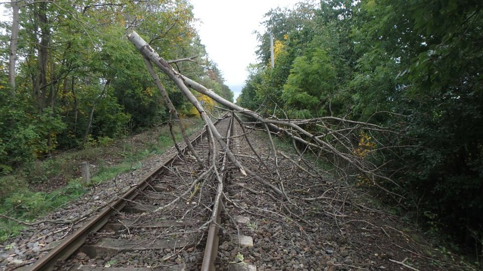 Mortimer řádil, u Jaroměře spadl strom do kolejiště.