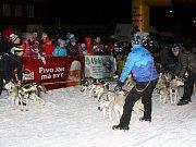 Ledová jízda musherů.