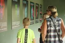 Safari Park Dvůr Králové otevřel novou výstavu, která upozorňuje na nelegální obchod se zvířaty.