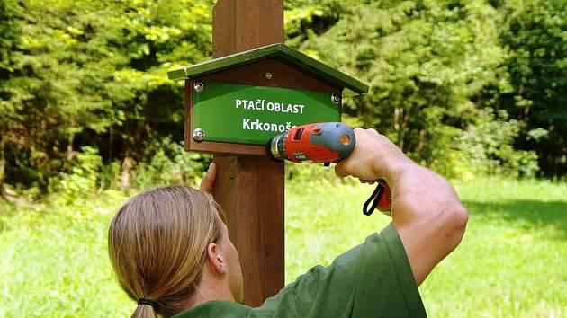 INFORMAČNÍ CEDULE se objevují podél horských cest. Na snímku jednu z nich instaluje strážce Michal Štěpánek .