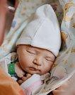 TEREZKA KUBIZŇÁKOVÁ se narodila Petře a Petrovi 8. dubna. Vážila 3,38 kilogramu a měřila 50 centimetrů. Rodina bude bydlet ve Dvoře Králové nad Labem.