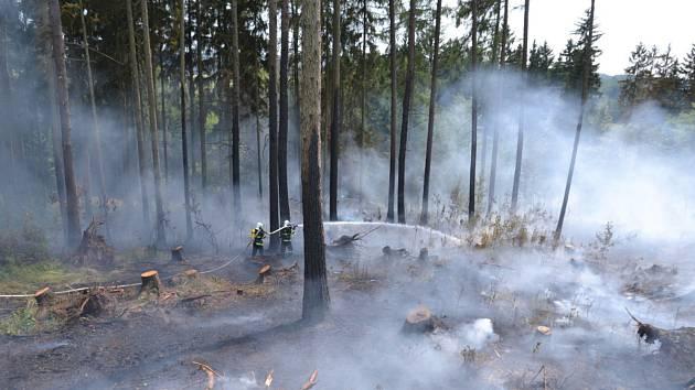 U Studence hořel hektar lesního porostu.