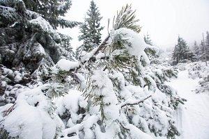 Listopadový sníh v Krkonoších