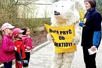 LEDNÍ MEDVĚD LÁKAL v sobotu návštěvníky zoologické zahrady k účasti na kampani pro záchranu Arktidy