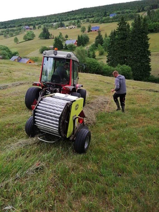 Skupinka zemědělských nadšenců v Malé Úpě se začala dobrovolně starat o místní louky. Obec je nadšená, díky tomu strmé horské stráně krásně voní a vypadají jako v Alpách.