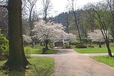 Trutnovský park