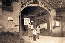 Vpočátcích fungování se do zoologické zahrady vcházelo ztehdejší ulice Z. Nejedlého (dnes Štefánikova), asi 20 minut pěší chůze z centra města. Byla to jediná přístupová cesta jak pro návštěvníky, tak i pro zaměstnance.