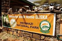 Eliška v tanzanském národním parku.