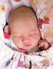 KAROLÍNA LEJDAROVÁ se narodila Janě Hrubé a Janu Lejdarovi 31. ledna ve 14.32 hodin. Vážila 3,31 kilogramu a měřila 50 centimetrů. Rodina bydlí v Levínské Olešnici.