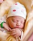 ROZÁRKA ŠEBELOVÁ se narodila Petře a Zdeňkovi 13. září v 1.17 hodin. Vážila 3,68 kg a měřila 50 cm. Doma v Semilech už čekají i sourozenci Kristýna, Vojta, Kačka, Matěj.