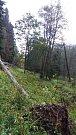 Uzavřená silnice mezi Temným Dolem a Malou Úpou