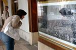 REKORDNÍ SKUPINOVOU FOTOGRAFII z letošního hudebního festivalu na trutnovském Bojišti je k vidění ve výloze lékárny na Krakonošově náměstí