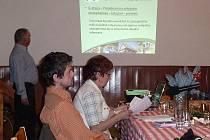 VEŘEJNÁ PROJEDNÁVÁNÍ strategie rozvoje regionu byla před svátky zakončena v Maršově Úpice a v Kohoutově.