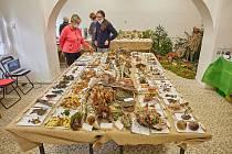 Výstava hub v žacléřském muzeu.
