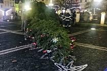 Spadlý vánoční strom v České Lípě.
