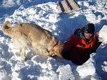 Ve Švýcarsku lavina zranila dva lidi, v Tatrách zabila polského horolezce