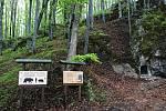 Krkonošský Svobodský kras láká k Medvědí jeskyni.